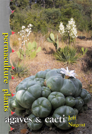 Permaculture Plants, agaves and cacti